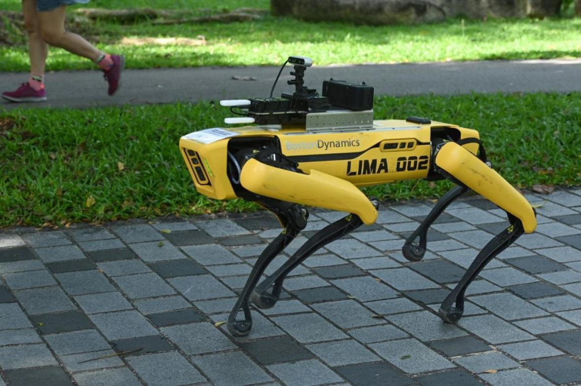 ربات چوپان در نیوزلند
