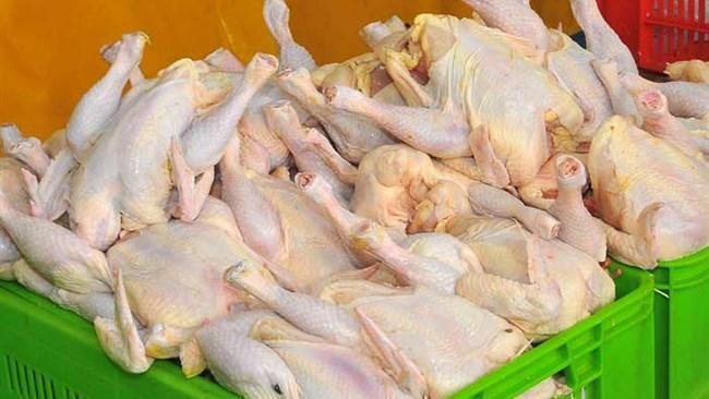 وزارت جهاد کشاورزی و صنعت مکلف به کنترل قیمت مرغ شدند